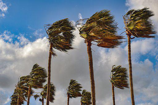 Superb 500 Free Windy Wind Images Pixabay Best Image Libraries Sapebelowcountryjoecom