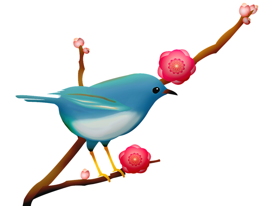Blue Bird, Sakura Branch, Bird On Branch, Pink Flower