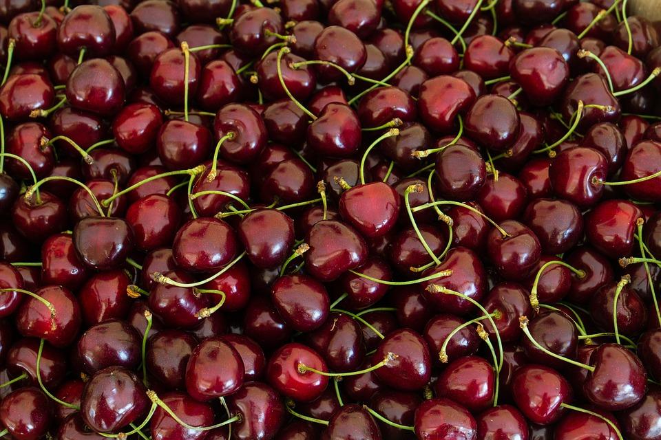 Cerise, Cerises, Fruits, Été, Sweet, Red, Mûres