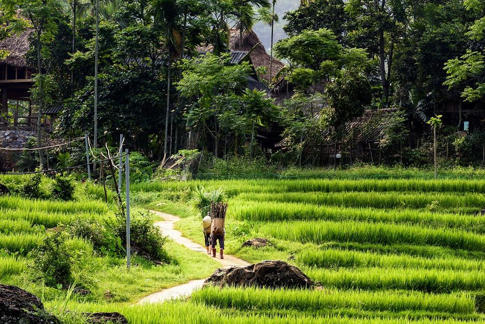 Pu Luong Nature Reserve Thanhhoa