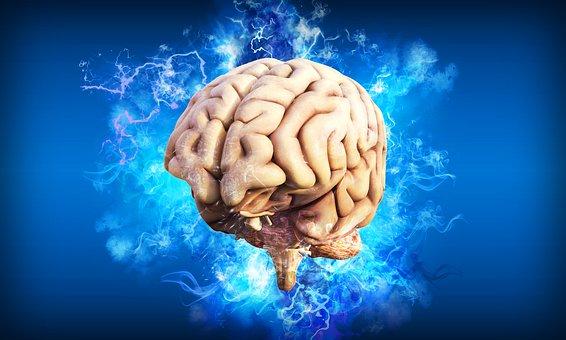 Gehirn, Gedanken, Geist, Idee