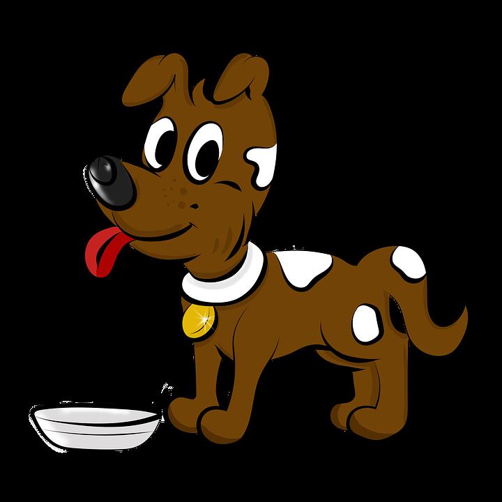 Desenho Cao Cor Imagens Gratis No Pixabay