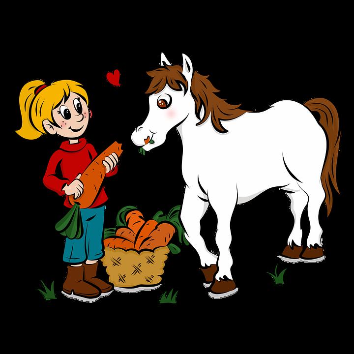Desenho Cavalo Cor Imagens Gratis No Pixabay