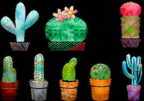 Download 700+ Wallpaper Bunga Kaktus