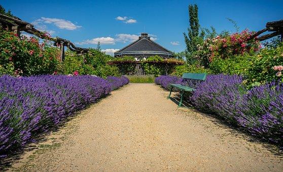 Plus de 400 images de Banc De Jardin et de Banc - Pixabay