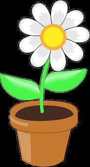 Pot Bunga Gambar Vektor Unduh Gambar Gratis Pixabay