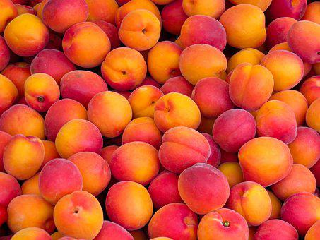 100 free nectarine peach images pixabay https creativecommons org licenses publicdomain