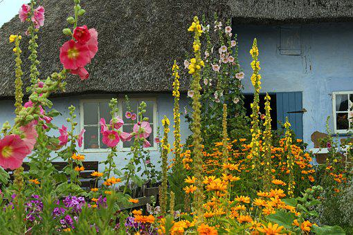 Farm, Thatched Roofs, Cottage Garden