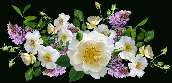 Flores, Blanco, Rosas, Wisteria, Acuerdo