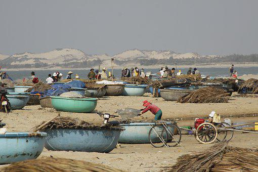 Вьетнам рассчитывает на 65% роста в морской аквакультуре