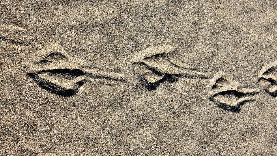 诱惑美腿丝袜撸撸网