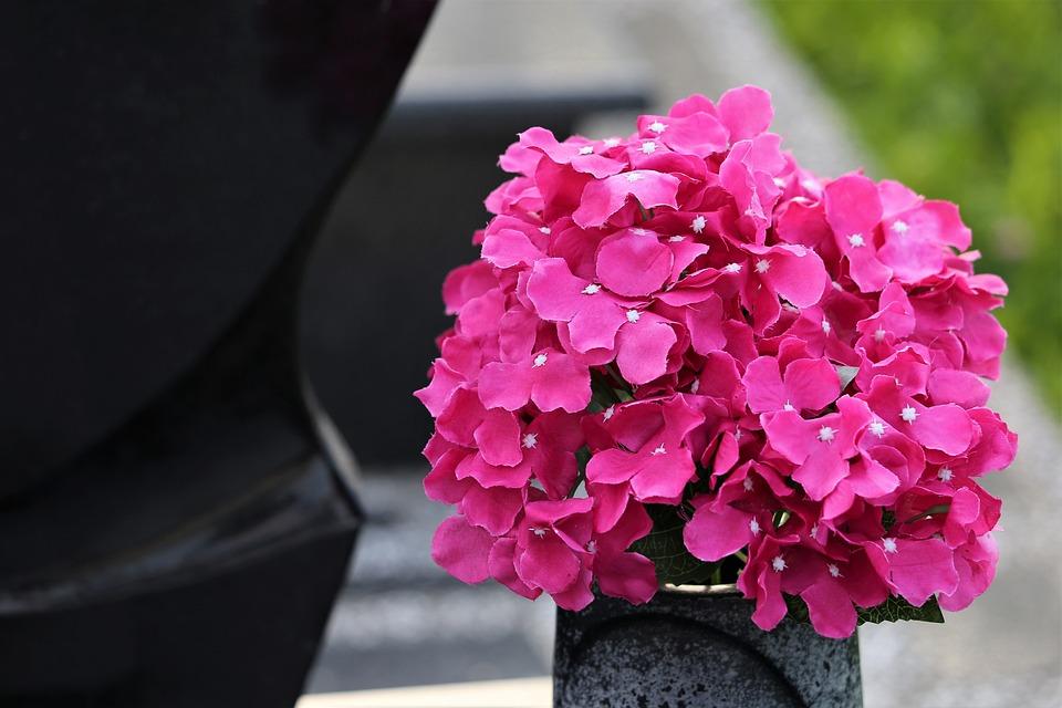 Flori Artificiale Vază Colorat Fotografie Gratuită Pe Pixabay