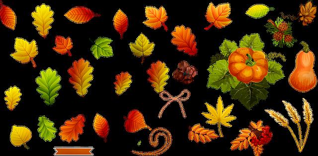 Free Image on Pixabay - Fall Leaves, Autumn Leaf, Nature