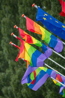 70+ Free Rainbow Flag & Gay Images - Pixabay