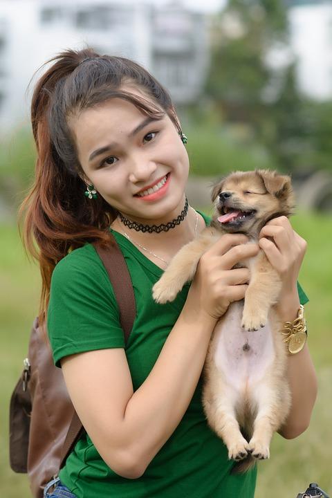 Girl Dog People - Free photo on Pixabay