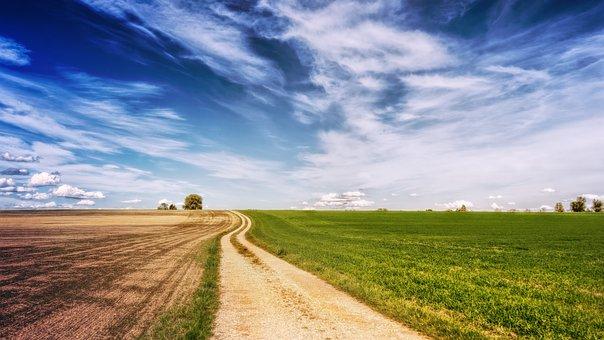フィールド, 道路, 風景, 空, 離れた, 草, 自然, 夏, 雲, 農村