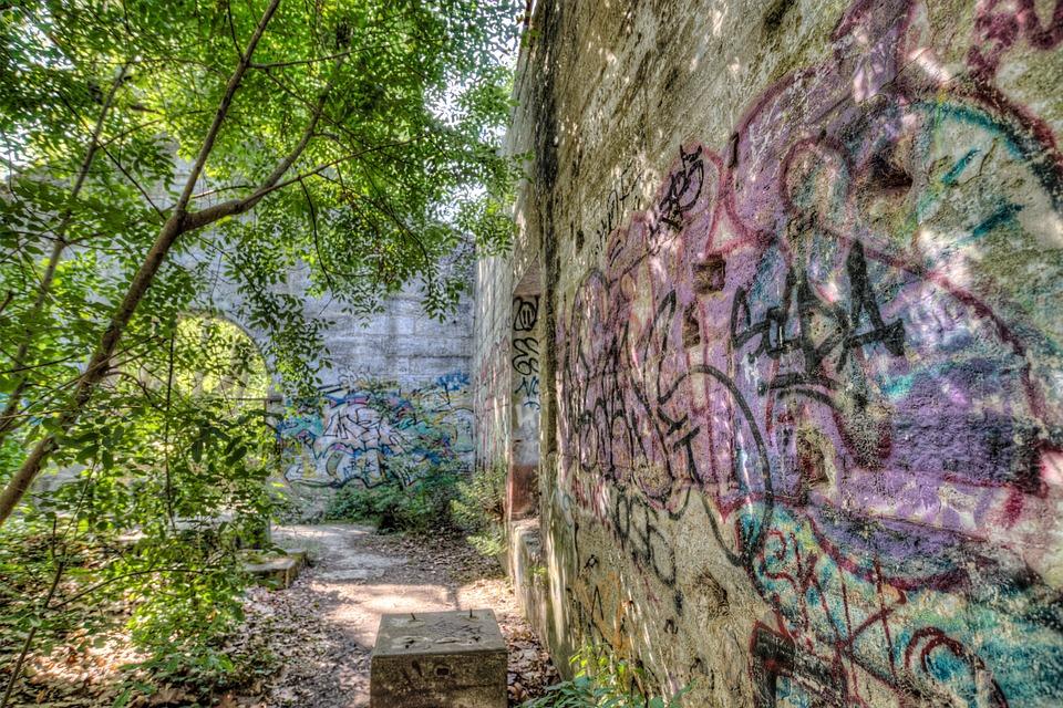 Abandoned House Overgrown - Free photo on Pixabay