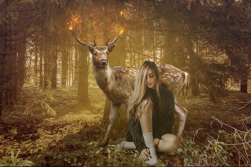 Fantasy, Fairytale, Dream, Scene, Wood, Light, Fawn