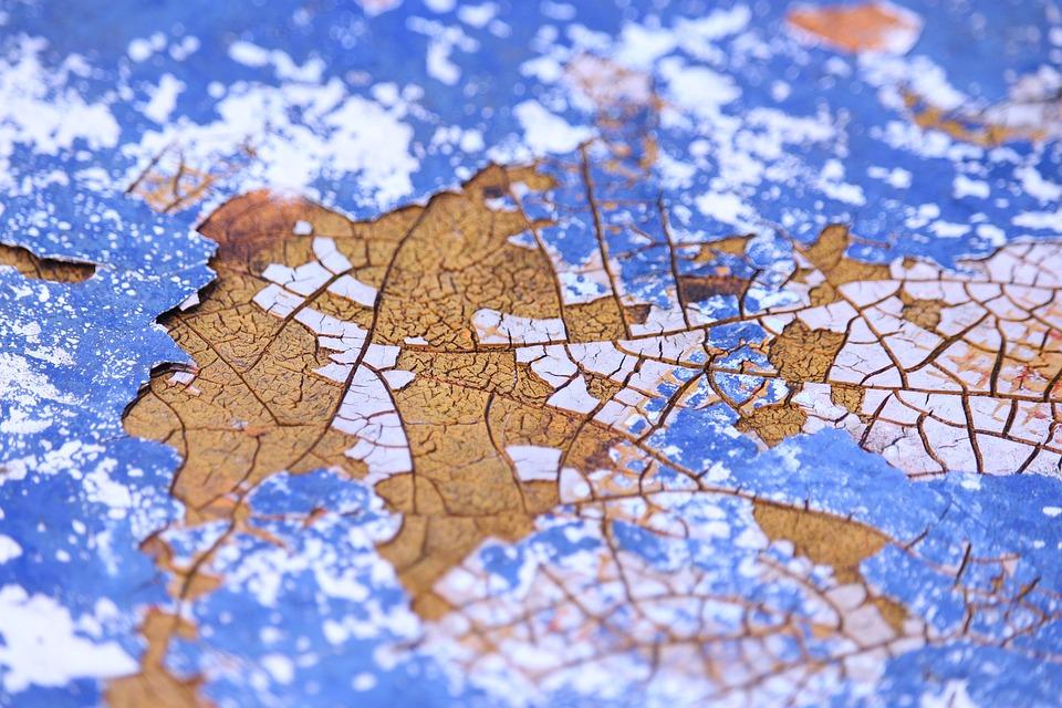 元智寰宇文化領航計畫 帶領偏鄉學童環遊世界