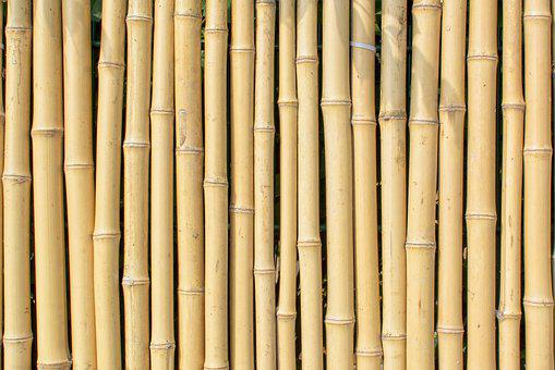 bamboo background fotos unduh gambar gratis pixabay https creativecommons org licenses publicdomain