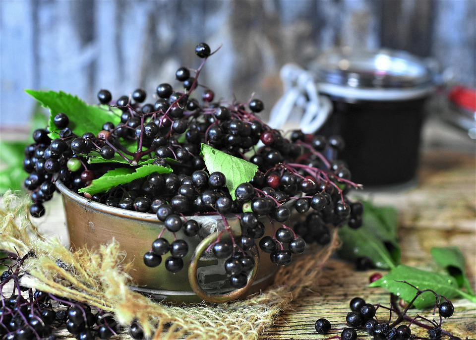 Elder, Elderberries, Berries, Juice, Fruits