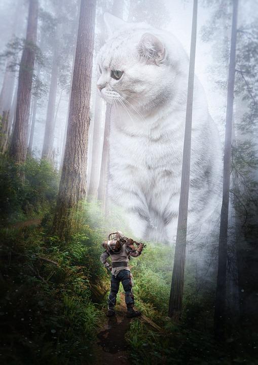 velká obří kočička xxx pornohub