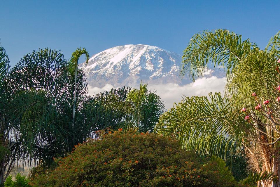 Kilimanjaro, Tanzania, Africa, Mountain, Nature, Snow