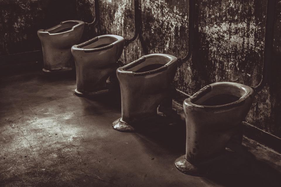 Auschwitz, Konzentrationslager, Toiletten, Geschichte