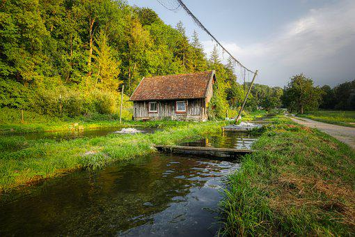 Fish Farming, Bach, Trout Breeding