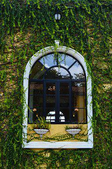 Window, Ivy, Italy, The Façade Of The