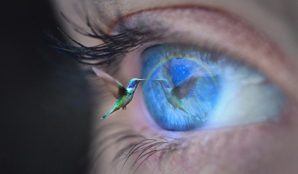 Oko, Rzęsa, Iris, Zobacz, Ptak, Koliber, Magia, Oka