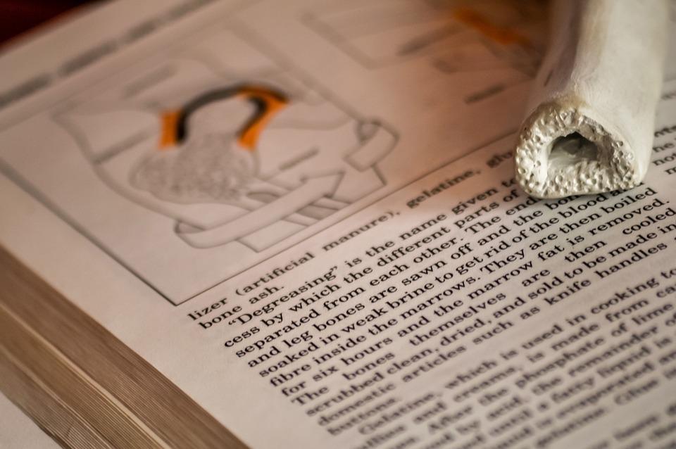 百科事典, 本, テキスト, 紙, 学校, 学習, 罫線入り用紙, 医療, 医学, 生物学, 解剖学