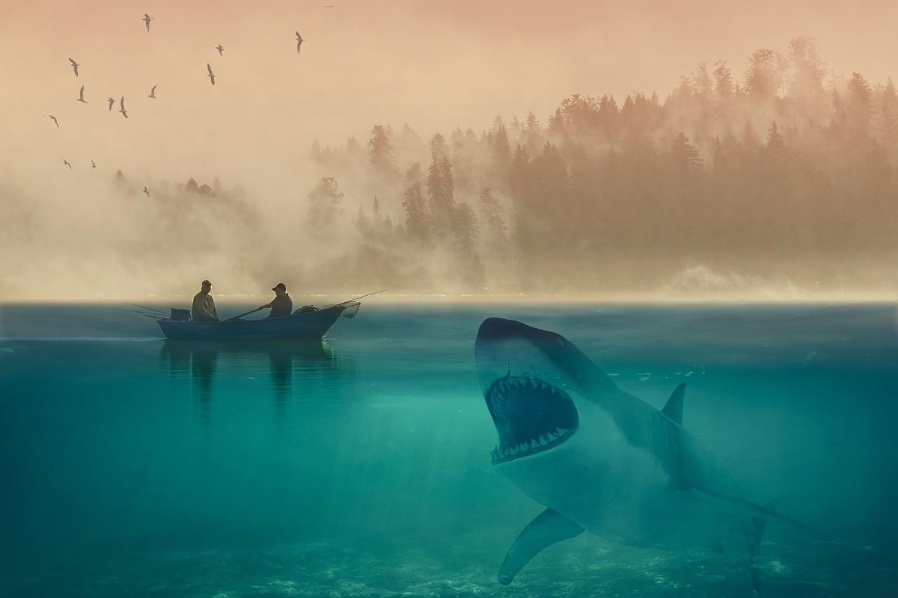 Картинки пираты акулы и киты