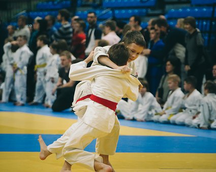 Judo, Athlete, Sport, Belt, Martial