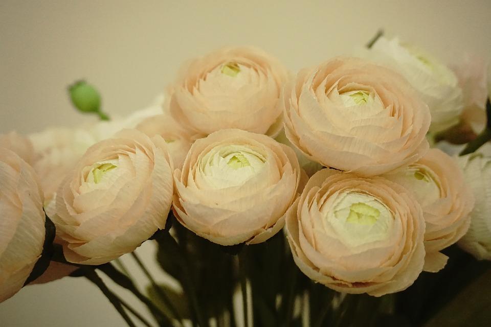 Bunga Kertas Krep Foto Gratis Di Pixabay