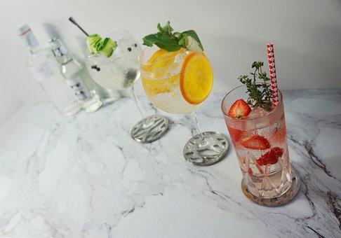 8 Tipps und 3 Rezepte zu Rhabarber- Gin Tonic