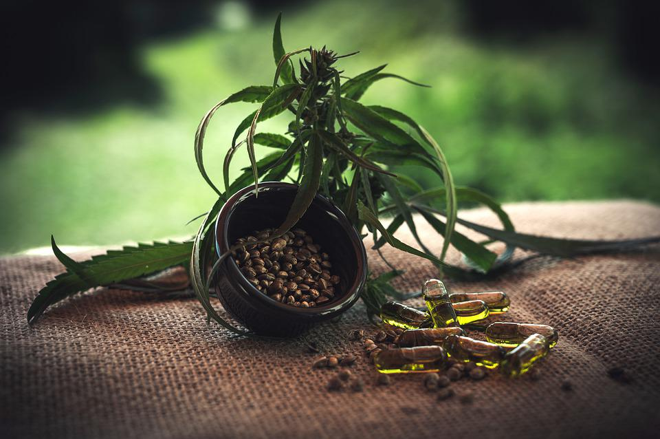Cbd, Cbd Kapseln, Cannabidiol, Hemp Seeds