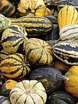 dynia, jesienią, żywność