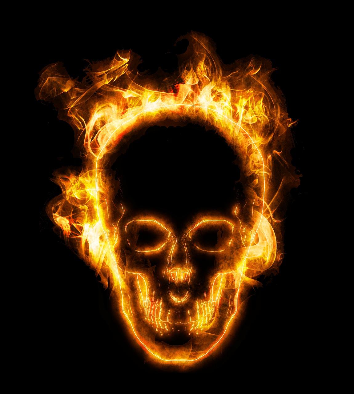 красивым картинки черепов в огне с костями розовым бантом кот