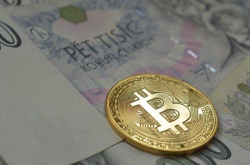 """什么是比特币""""鲸鱼""""?- 对加密货币价格有重大影响的存在"""