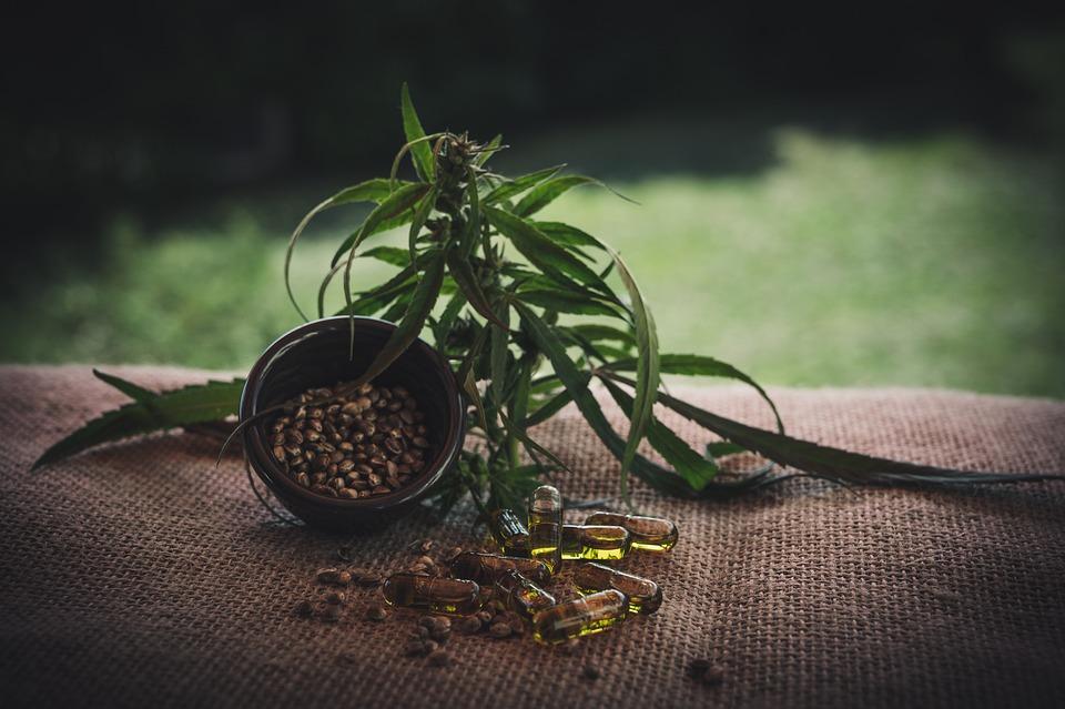 Cbd, Cbd Kapseln, Cannabidiol, Hemp Seeds, Cannabis