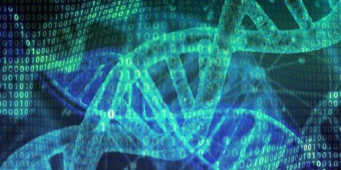 Dna, Heritage, Helix, Proteins, Biology