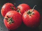 pomidor, pomidory, warzyw