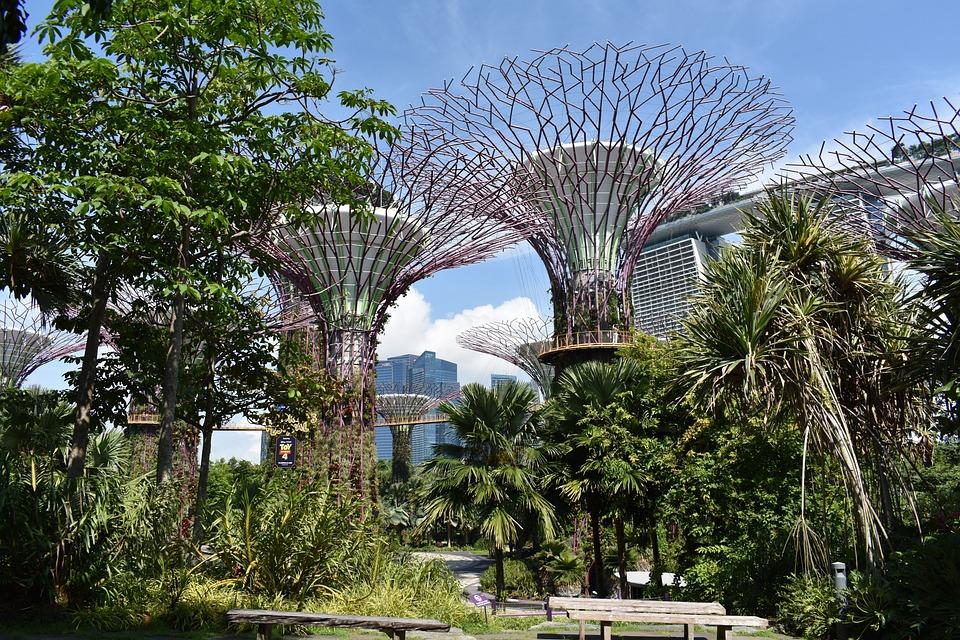 """Image result for singapore gardens"""""""