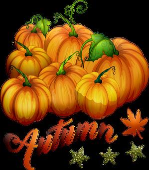 Autumn Pumpkins, Pumpkin, Halloween