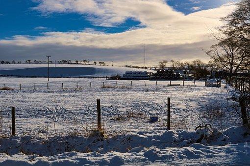 Snow, Farm, Winter, Nature, Rural