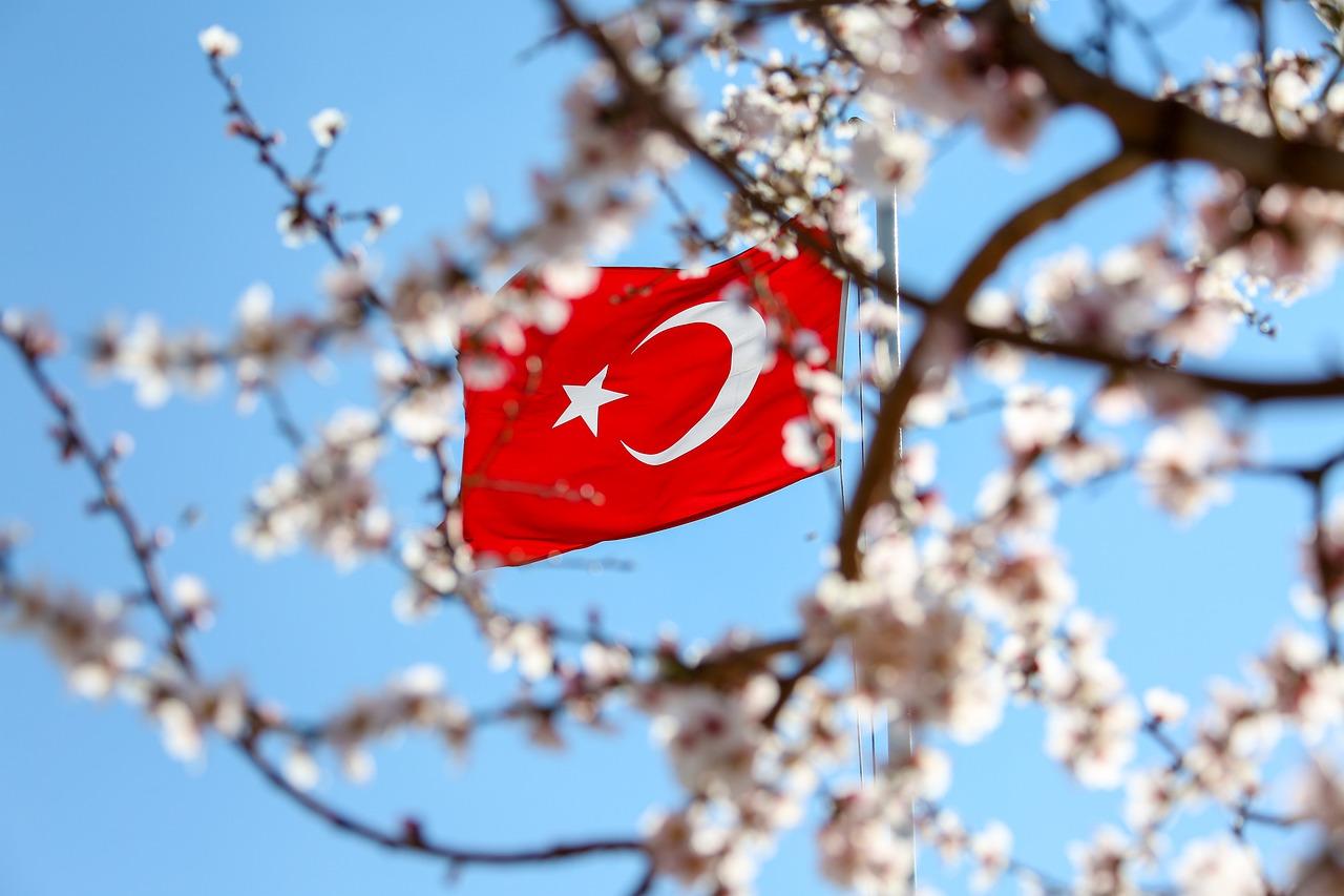 Турецкий Флаг Турция - Бесплатное фото на Pixabay