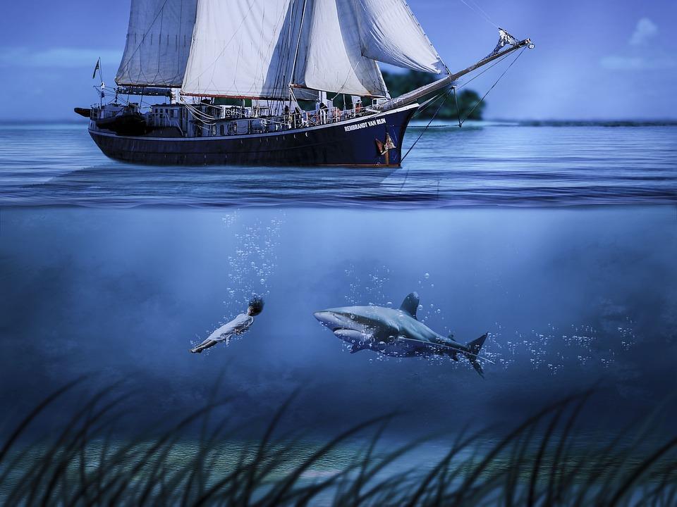 Shark, Pirate, Ship, Sea, Undersea, Voyage, Maritime