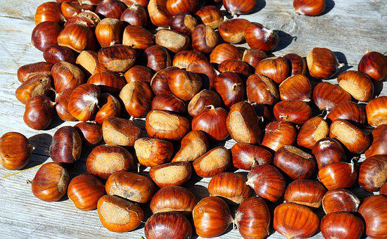 Chestnut, Ripe, Autumn, Fruit