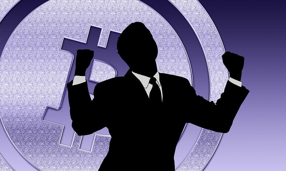 Bitcoin Success Business - Free image on Pixabay